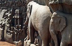 India rupestre